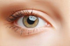 Macro eye Stock Image