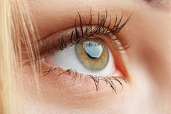 Macro eye Royalty Free Stock Image
