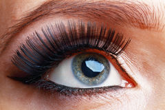 Macro eye Royalty Free Stock Photography