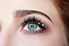 Macro eye Royalty Free Stock Photography