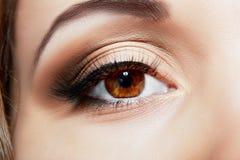 Macro eye Stock Photos