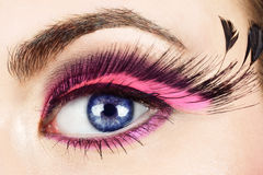 Macro of eye with fake eyelashes. Royalty Free Stock Images