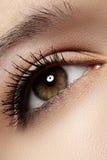 Macro eye with fashion light make-up, long eyelashes royalty free stock photos