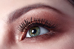 Macro eye with make up Royalty Free Stock Photo