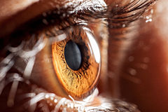 Macro eye Royalty Free Stock Photo
