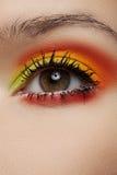 Macro of fashion sunny eyes make-up. Beautiful eye Stock Photos