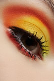 Macro of fashion sunny eyes make-up. Beautiful eye Royalty Free Stock Photos