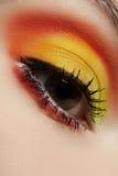 Macro of fashion sunny eyes make-up. Beautiful eye Royalty Free Stock Photos