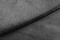 Macro of a feather, lines on the feather Royalty Free Stock Photos