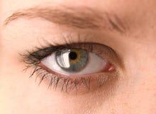 Macro femminile dell'occhio immagine stock