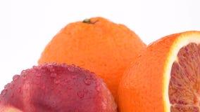 Macro fine di estremo su di frutta, del mandarino e della nettarina arancio succosi con le gocce di acqua che girano sul fondo bi stock footage