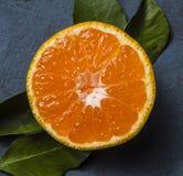 Macro fine fresca arancio di vista superiore della foglia del mandarino sul mezzo agrume della frutta immagine stock libera da diritti