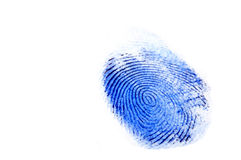 Fingerprint. Macro of a fingerprint with blue ink Royalty Free Stock Photos