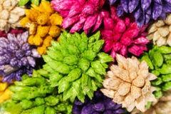 Macro fleur en épi sèche colorée de boule d'isolement sur le backgr blanc Image libre de droits