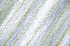 Macro fond de texture de poireau Images stock
