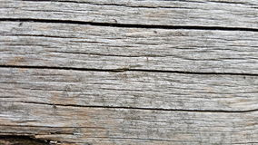 Macro fondo di legno grigio di struttura Fotografie Stock Libere da Diritti