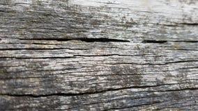 Macro fondo di legno grigio di struttura Fotografia Stock