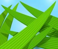 Macro fondo di vettore dell'erba verde Fotografia Stock Libera da Diritti