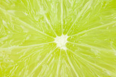Macro food collection - Lime texture Royalty Free Stock Photography