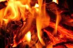 Macro foto del fuoco Fotografia Stock