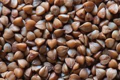 Macro foto del grano saraceno Fotografia Stock