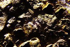 A macro fotos showing the details of golden nuggets royalty free stock photo