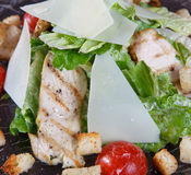 Macro fragment of salad with grilled chicken meat, Stock Photography