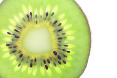 Macro of fresh kiwi fruit Royalty Free Stock Photo