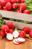 Macro of fresh sliced radish in crate Royalty Free Stock Image