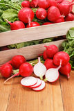 Macro of fresh sliced radish in crate Stock Images