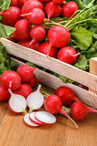 Macro of fresh sliced radish in crate Royalty Free Stock Photo