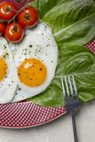 Macro fried eggs breakfast with salad and tomatoes at plate stock image