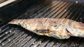 Macro Fried Grill Fish with Golden Crust Sprinkled with Spice stock footage