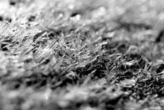 Frost macro close up Royalty Free Stock Photo