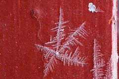 Macro frosty pattern  ice crystal natural Royalty Free Stock Images