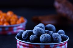 Macro frozen blueberry in lid Royalty Free Stock Image