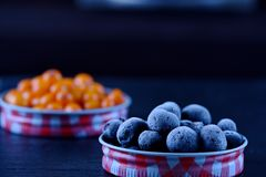 Macro frozen blueberry and sea buckthorn in lid Royalty Free Stock Photography