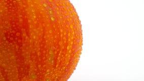 Macro fucilazione del pomodoro a strisce del globo rosso Mezza struttura del pomodoro che gira lentamente sulla piattaforma girev video d archivio