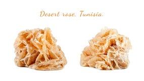 Macro fucilazione della pietra preziosa naturale Rosa del deserto minerale, Tunisia Oggetto isolato su una priorità bassa bianca Immagine Stock
