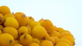 Macro fucilazione delle bacche comuni dell'olivello spinoso di giallo arancio Destra di un mucchio Girando sulla piattaforma gire archivi video