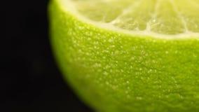 Macro fucilazione di un agrume Calce succosa verde Una calce succosa fresca su un fondo nero Calce verde, bella con acqua video d archivio
