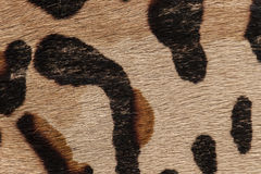 Macro of fur carpet. Macro of animal print carpet stock photo