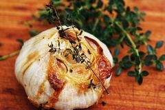 Macro garlic Stock Images