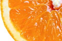 Macro gedetailleerde mening van gesneden oranje fruit Stock Fotografie