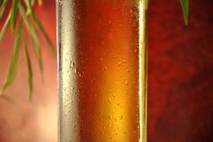 Macro of a glass of beer Stock Photo