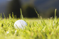 Macro of golf ball in grass. Royalty Free Stock Photo