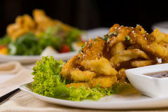 Macro Gourmet Crispy Main Dish on Lettuce Royalty Free Stock Images