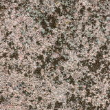 Macro of a granite structure with lichen.  stock photography