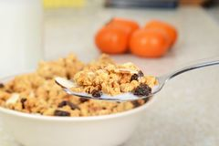 Macro granola raisin almond cereal with milk on a spoon. With oranges in the background royalty free stock photography