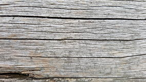 Macro gray wood texture background Royalty Free Stock Images
